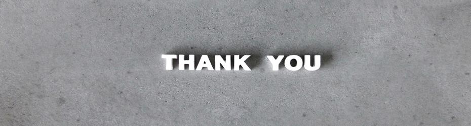thankyoubirgittadevos